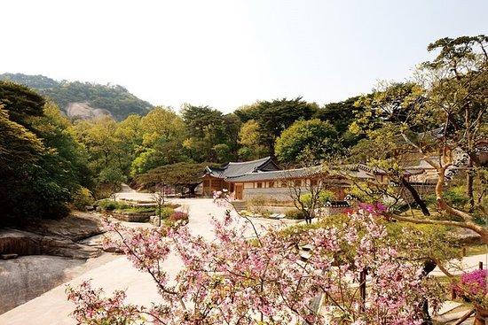 Ma visite privée préférée de Séoul