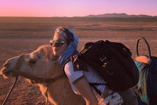 Desert  agafay Day tours