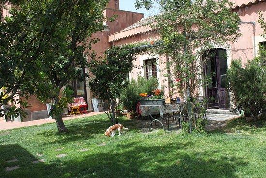 كاتانيا, إيطاليا: Grandi aree verdi per giocare, bambini felici e tanto relax per tutti. La Casita è la tua occasione per fuggire dal caos della città e rifugiarti in un'oasi di spensieratezza insieme ai tuoi amici o alla tua famiglia.