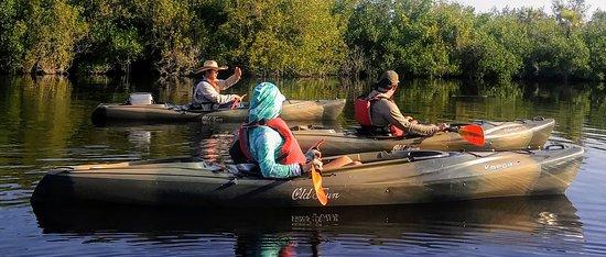 Jenny's Eco Everglades Wilderness Tours