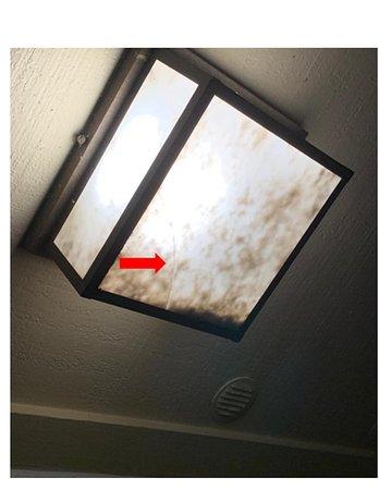 Broken light fixture upon entering suite - brewing disease!