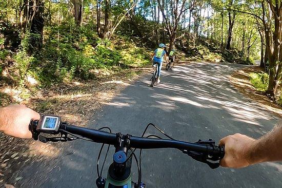 Beyond Byron E Bike Tours - Byron Bay