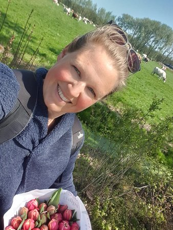Cycling through the (bulb)fields to buy tulips! A little stop to have a look at the cows.