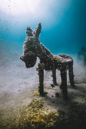 Esculturas bajo el agua!! una atracción muy visitada.