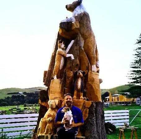 Toora Dog Tree