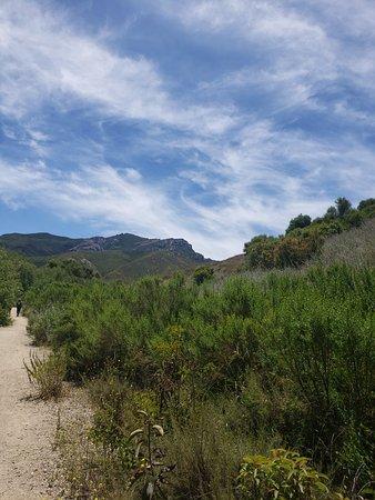 Newbury Park, CA: Big Sycamore Canyon Hike