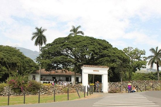 Sugar Cane Hacienda El Paraiso & Nature Day Tour