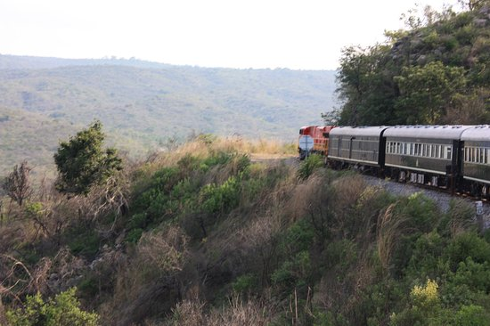 On the way from Victoria Falls the train stopped for a safari