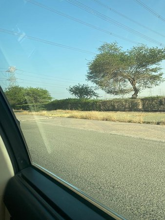 Ahmadi, Kuait: محافظة الأحمدي