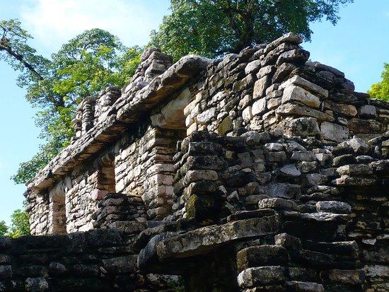 Yaxchilan un de nos coups de coeur dans le Chiapas