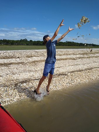 Flying oyster shells.