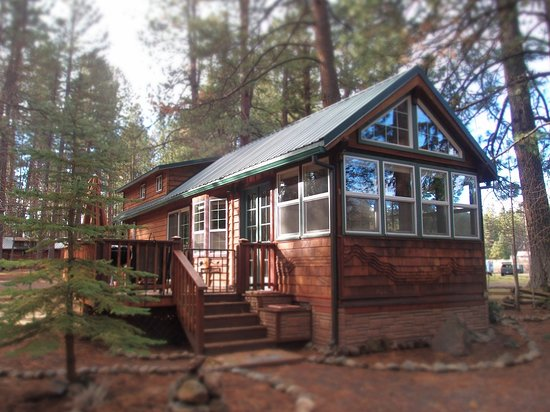 Set back from the Metolius but with a filtered river view, Pinecone Cabin offers a sense of nostalgia that all ages can appreciate. Relax and listen to the river from Pinecone's sweet side patio while enjoying a glass of wine or craft beer with good conversation.  Inside, Pinecone is beautifully finished with striking tongue-and-groove pine that brings out the true log cabin feel. Kids love the low-ceiling loft; perfect for building sheet tents and spying on the grown-ups!