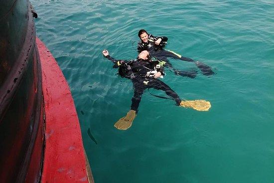Rescue Diver y EFR (inicio en Koh...