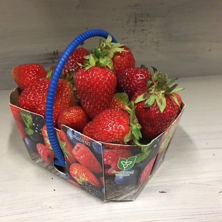 Field strawberries grown on the farm next to Cider Keg Farm Market are now available