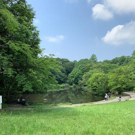 Kamoike Park