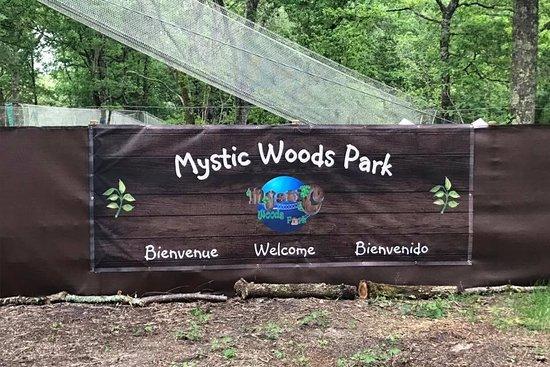 Mystic Woods Park