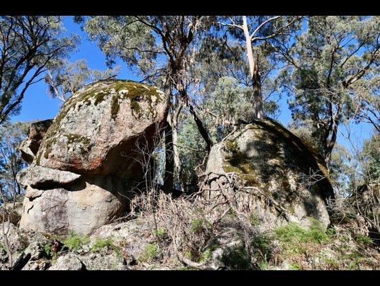 Mount Victoria, Úc: getlstd_property_photo
