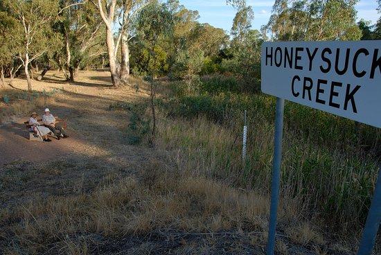 Honeysuckle Walking Track