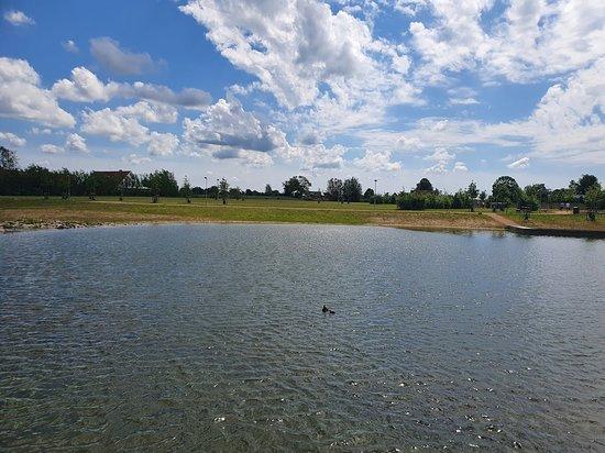 Råbysjön och Råby Sjöpark