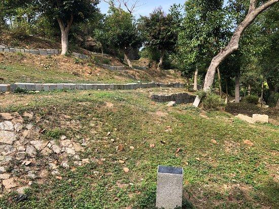 Coloane Arboretum