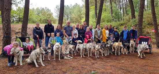 Jaulnay, Frankrike: Cani rando en groupe et en famille (regroupement familial) avec une activité privatisée