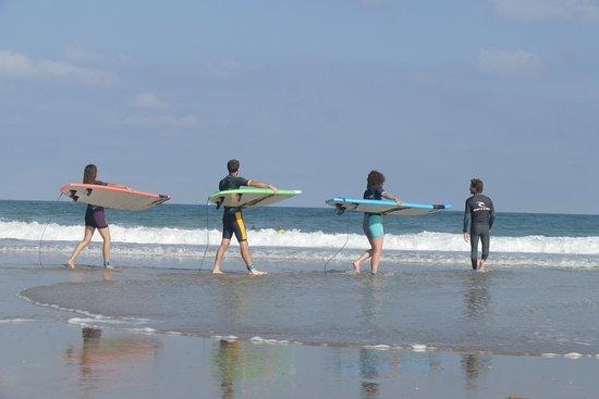 آنجليه, فرنسا: Anglet : surf coaching premium !  Coaching privé ou bien collectif.  Nos coachs : 6 titres de champion de France entre autre ;) 