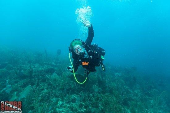 SCUBA SHACK - Shoal Bay Scuba