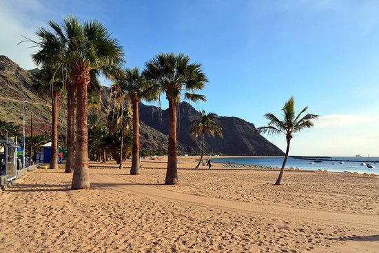 Mozio - Tenerife