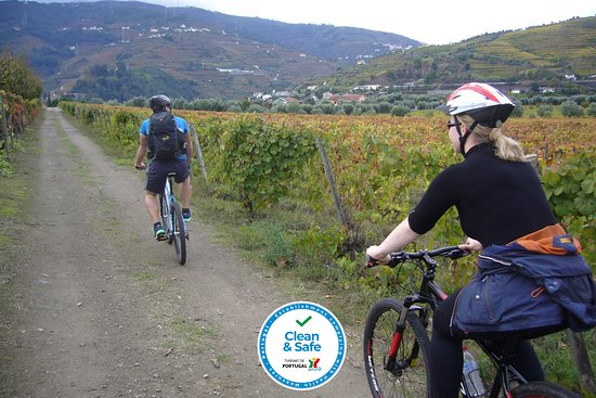 Peso da Régua, Portugal: Douro Valley - Bike Tour