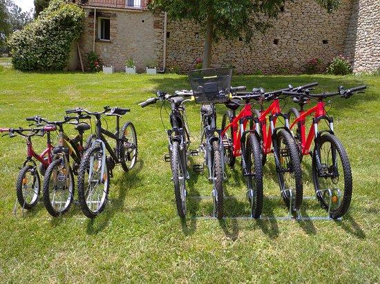prêt de vélos pour toute la famille afin de profiter de notre belle campagne
