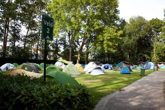 Camping Vliegenbos field 2 (2019)