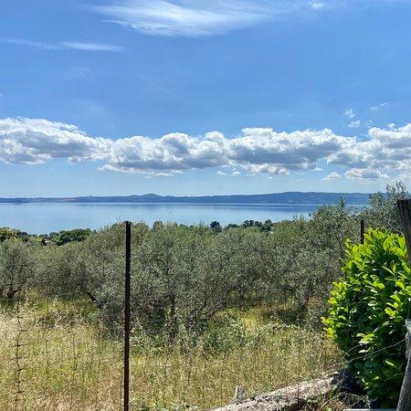Foto de Province of Viterbo