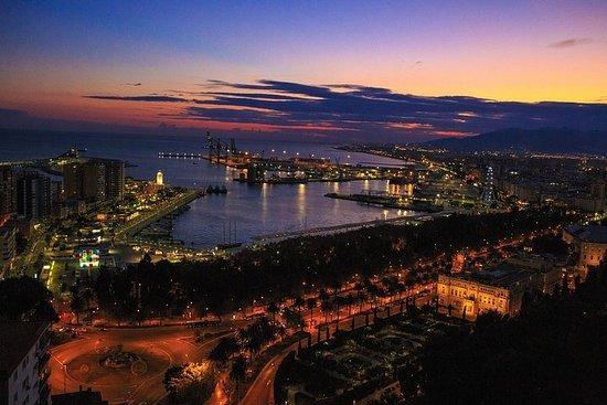 Gibraltar-dagtocht in Malaga