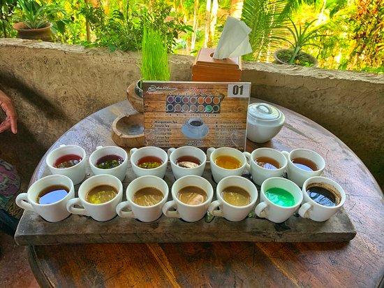 Luwak Coffee Bali Plantation (Denpasar) - 2020 What to ...