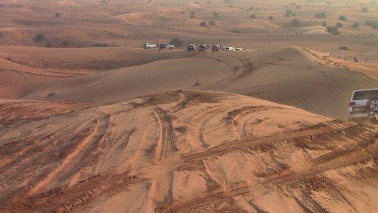 Desert Safari Experience From Sharjah: Atmosfera emozionante