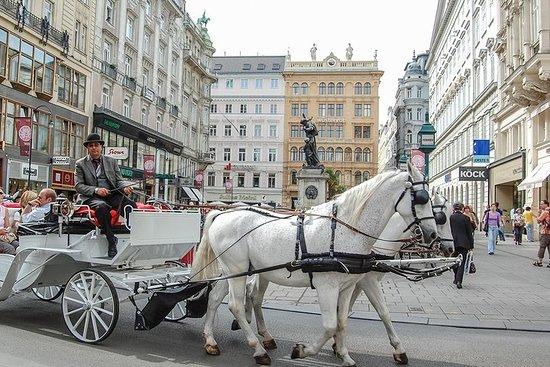 Wien Sightseeing Dagstur från Prag