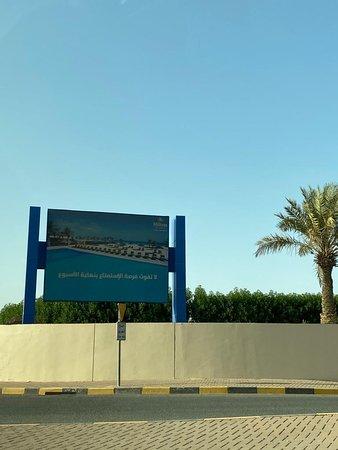 파하힐 사진