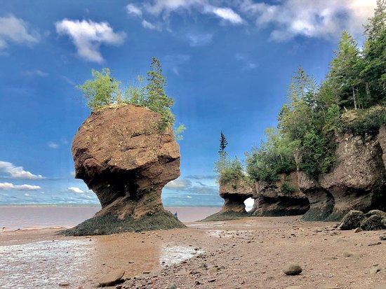 The rocks of Hopewell Cape in Canada is a spectacular place to stop for at least a couple of hours. This was last stop on Canadian ground of our tour around Nuova Scotia. Very huge car parking, electric shuttle carts to drive visitors to the location and very safe structure to step down on the beach during low tide. Do not miss it 😉