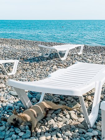Russian Black Sea Coast, Russland: Relax for everyone :)