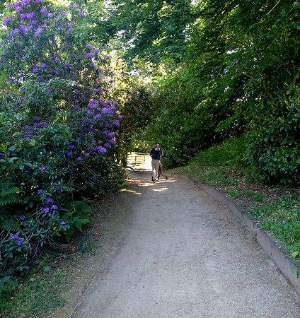 Walk between 3rd Green & 4th Tee at Bridgnorth Golf Club,  The Best Golf Course in Shropshire