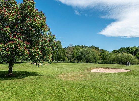 7th Green at Bridgnorth Golf Club,  The Best Golf Course in Shropshire