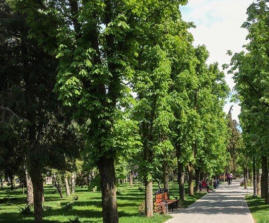 Pogranichnikov Park