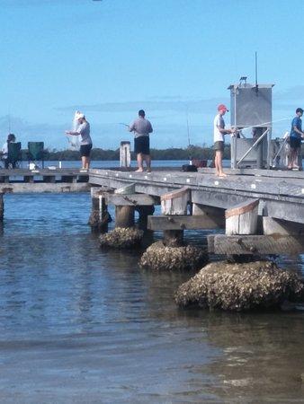 Amazing fishing areas!