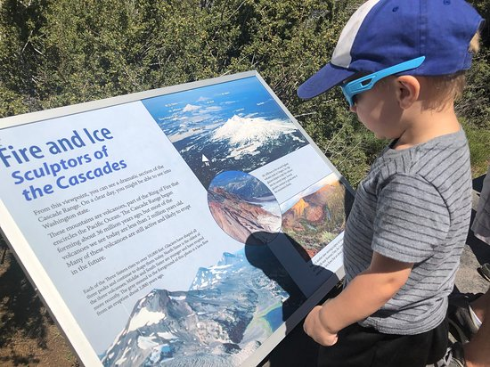 Even the littles one checked out the many information boards located along the perimeter of the viewing deck.