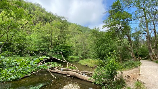 Gorgeous nature place