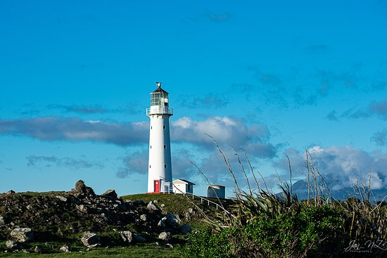A short drive away from the Cape Egmont lighthouse on the Surf Highway.
