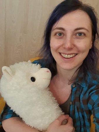 stuffed llama to cuddle with
