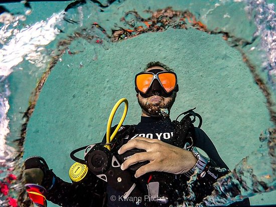 2 Fun Dives! - For Certified Divers Photo