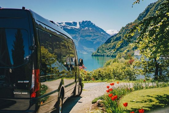Norway in a day trip - Hardangerfjord...