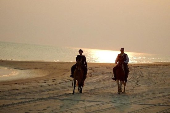 Beach Horseriding & Sunset Resmi